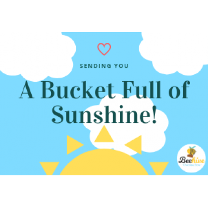 Beehive Bucket Full of Sunshine Chocolate Surprise Gift Set